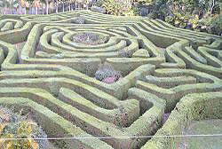 Queensland Australia Things to do - Bellingham Maze