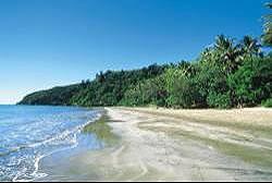 Bloomfield Rainforest - Cairns to Cooktown