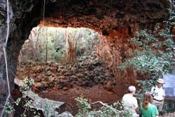 Undarra Lava Tubes  Cape York Australia