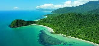 Cape Tribulation Australia