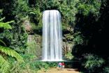 Millaa Millaa Falls Queensland Australia