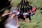 Bungee Jungle Swing Australia